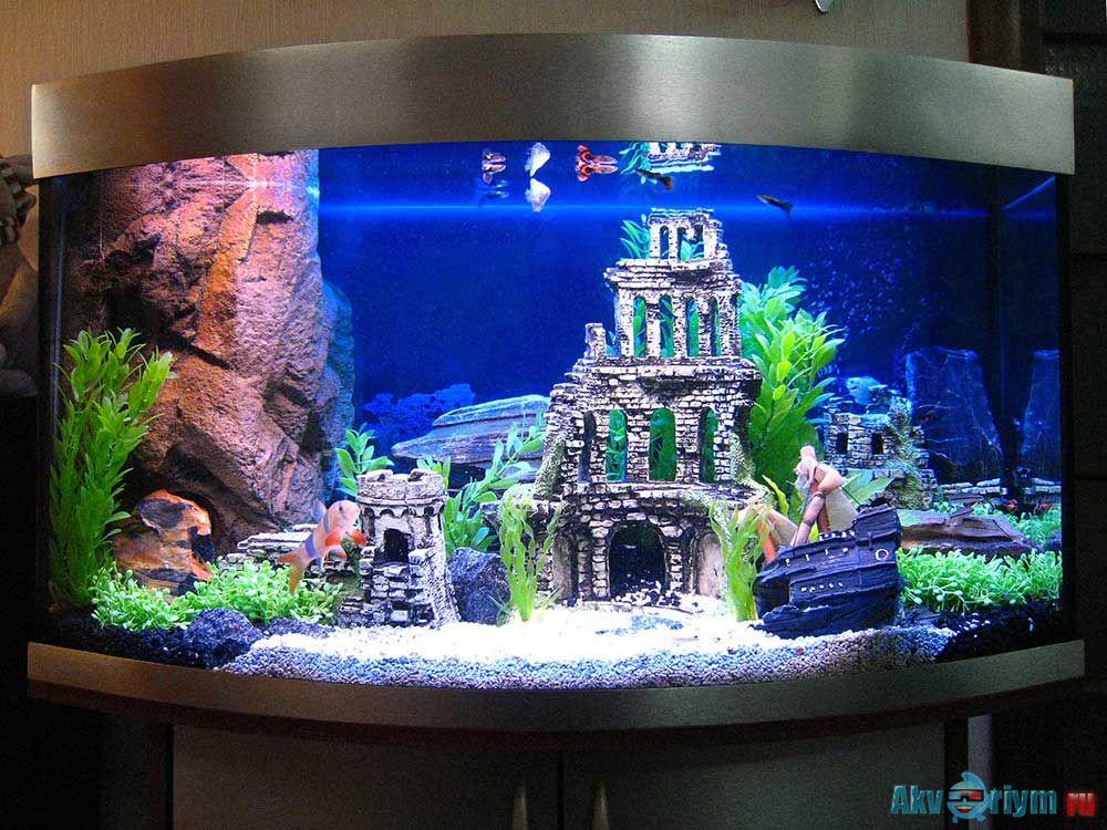 Как красиво оформить аквариум с